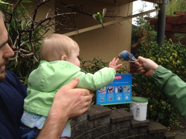 Nice birdie! Evie eat bird!