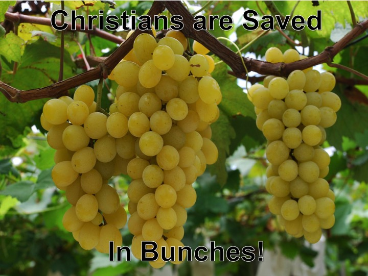 Saved in Bunches