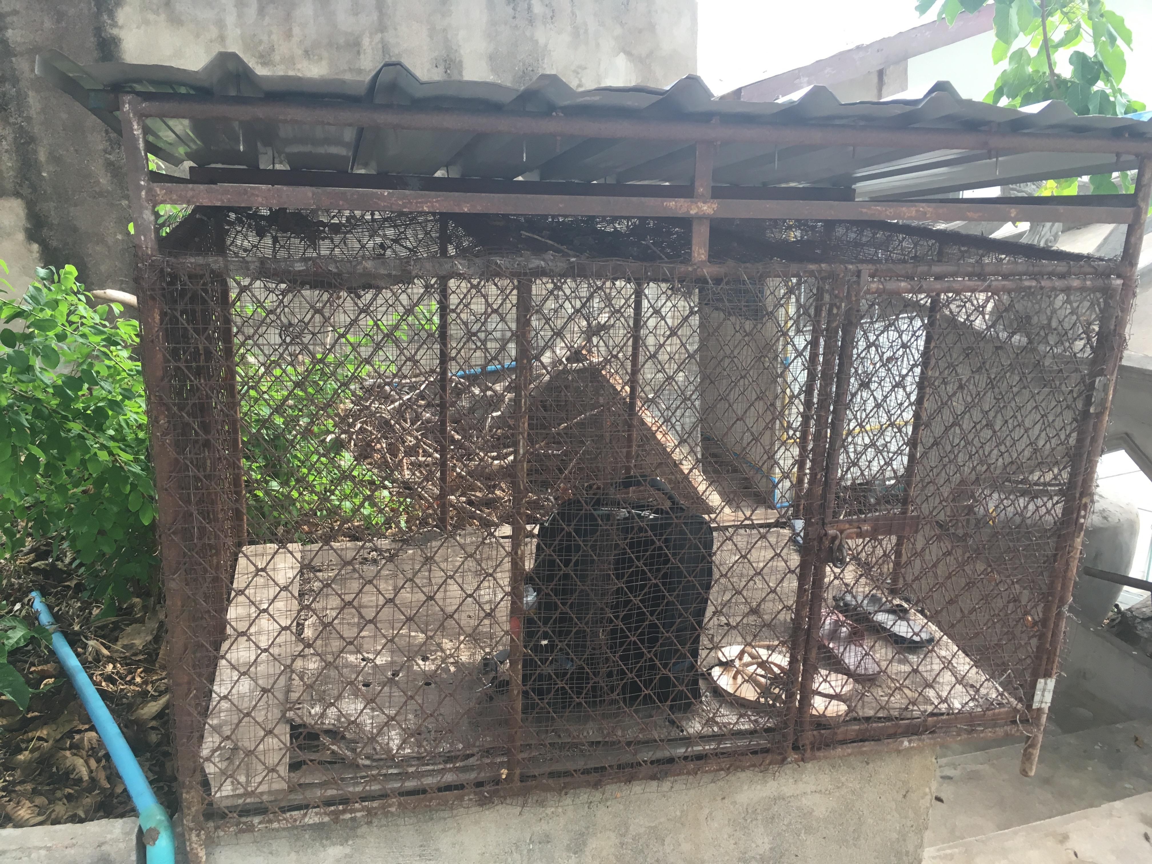 Lopburi Sight Seeing41