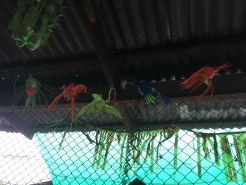 Lopburi Sight Seeing52