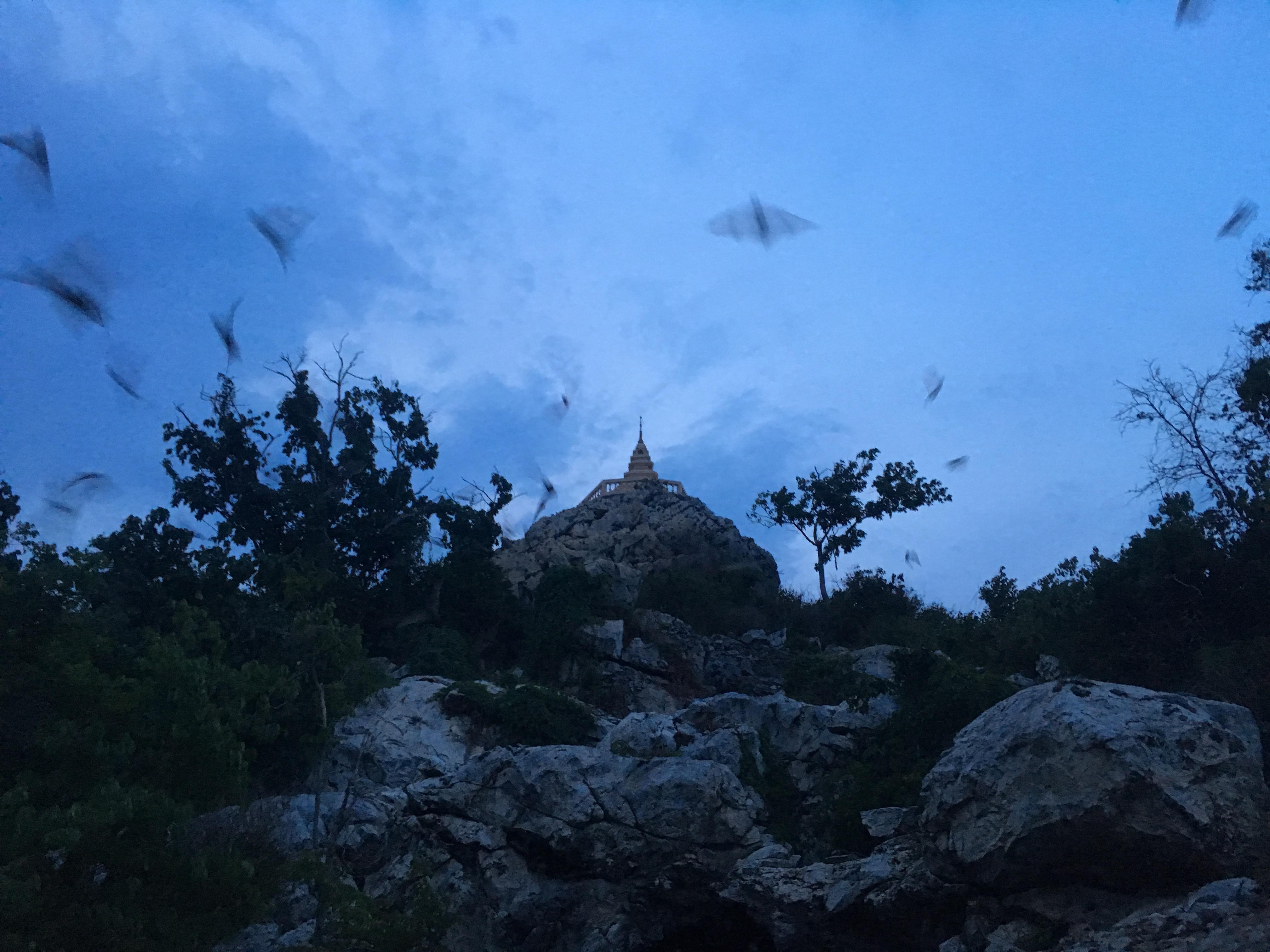 Lopburi Sight Seeing62