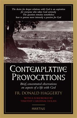 contemplative-provocations